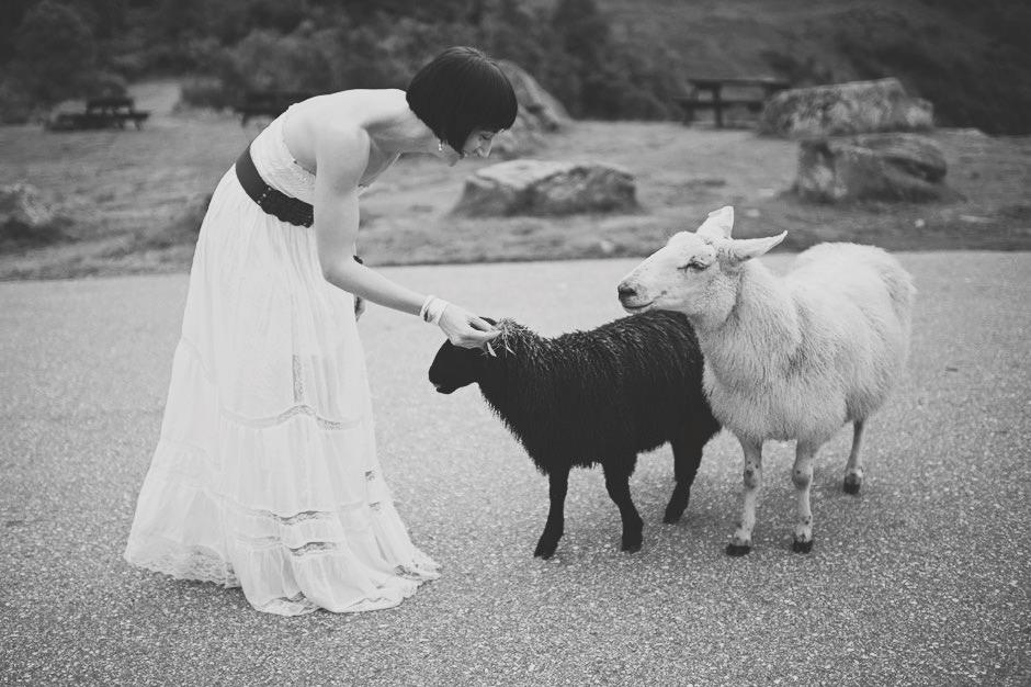 Norwegian Wedding Photographer