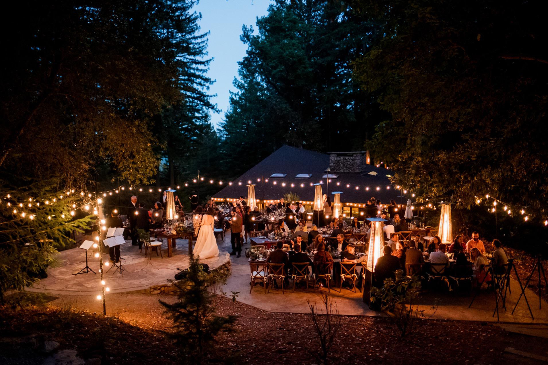 sequoia wedding photos